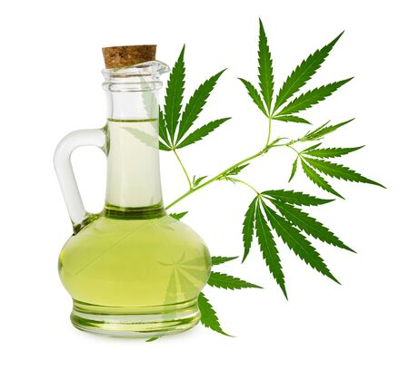 Hemp oil isolated. Sativa seed oil plants in glass bottle and fresh green cannabis branch with leaves on white background