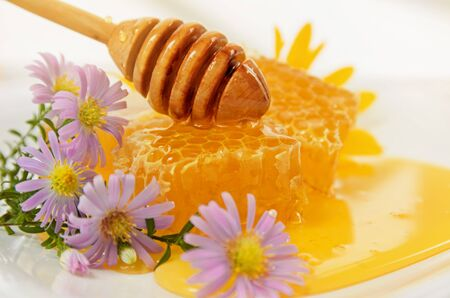 Honeycomb with wooden dipper and purple autumn flowers, close-up
