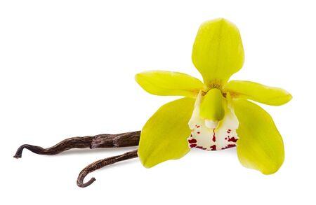 Fiore di vaniglia e 2 bastoncini isolati su sfondo bianco come elemento di design della confezione