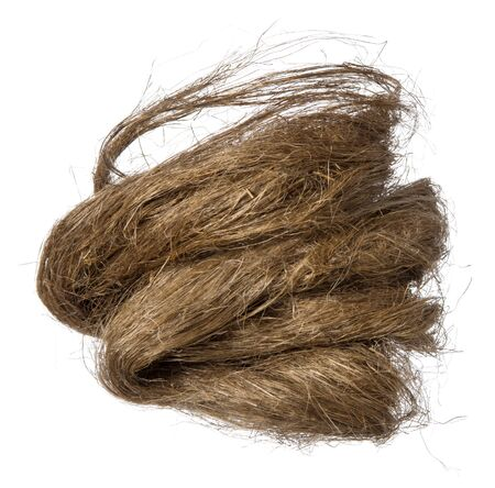 Hemp fiber from sturdy natural plant fibres as the nature of the material for textiles, shipping and construction, isolated on white background