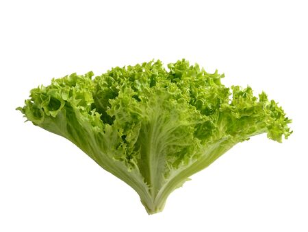 Lettuce bunch with green leaves isolated on white background