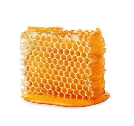 Honeycomb isolated single piece with liquid honey on white background