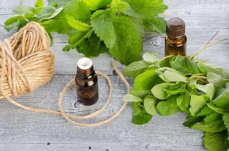 Lemon balm, Melissa and mint fresh leaves and essential oil in bottle on wooden table, herbal nature medicine and aromatherapy