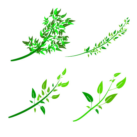 seedlings: Flat style illustration. You can use as the background for your decor, decoupage, frames, textiles.For drawing shrubs, trees, seedlings. Illustration