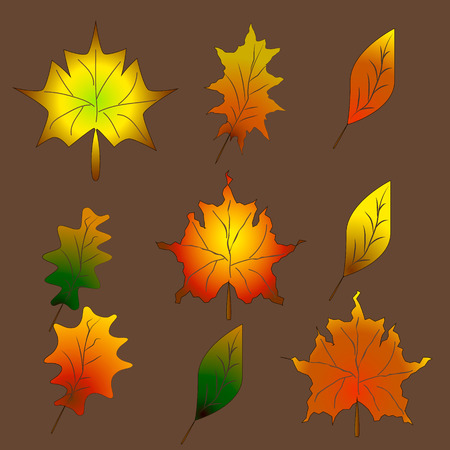 Set Autumn leaves,  can be used for wallpaper, design, card, invitation. Ilustrace