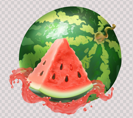 Watermelon slice, round, juice. Fresh fruit. 3d realism, vector object. Isolated, on white background. Delicious dessert. Healthy food, veggie. Vector Illustration
