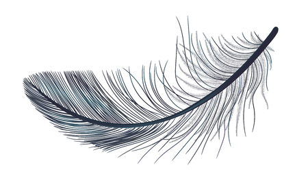 Feather, fluff, fuzz is a black, realistic 3d. Gothic. Foto de archivo