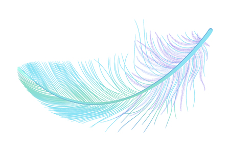 Feather, fluff, fuzz vector, realistic 3d. Colored, blue, purple, green. Pooh, lightness, airiness.