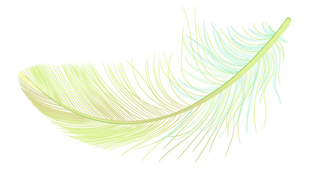 Feather, fluff, fuzz, realistic 3d. Colored, yellow, green. Pooh, lightness, airiness. Stock Photo