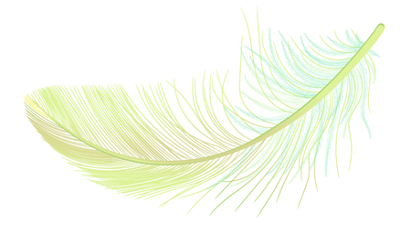 Feather, fluff, fuzz vector, realistic 3d. Colored, yellow, green. Pooh, lightness, airiness.