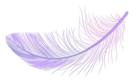 Feather, fluff, fuzz vector, realistic 3d. Colored, violet, purple. Pooh, lightness, airiness.