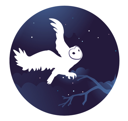 White owl in vector at night. School of magic, fantasy, mystical night, Halloween.