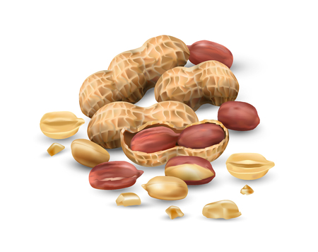 Peanuts 3D illustration realistic. For packaging with peanut butter, nut mix. Vegetable protein for vegetarians, a useful product.