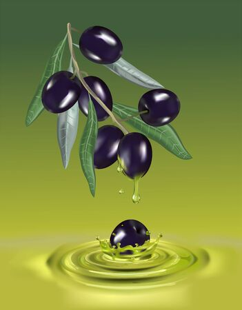 Olive oil with branch. Realistic 3d fruits. Drop of oil splash.