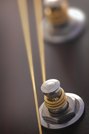 fingerboard: Guitar mechanism to adjust the strings, photographed close-up Stock Photo