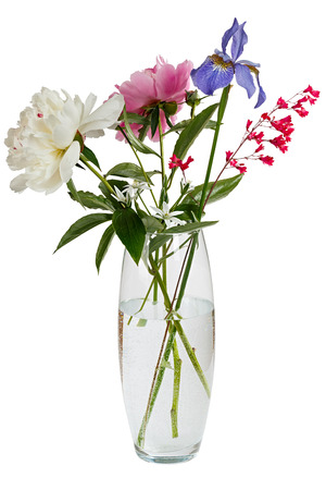 flower petal: Blooming bouquet of flowers in a transparent vase with water. Isolated on white background.