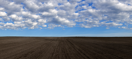 multiple images: Plowed field prepared for sowing cereals. Panoramic view of the multiple images. Stock Photo