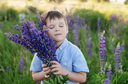 Adorable little boy in a blue T-shirt with a bouquet of lupins in a meadow