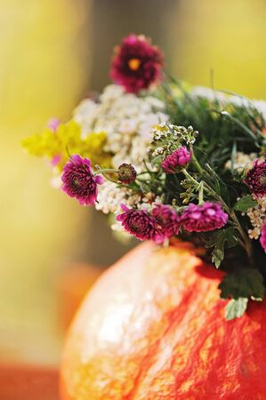 autumn still life with pumpkin and lilac flowers Imagens