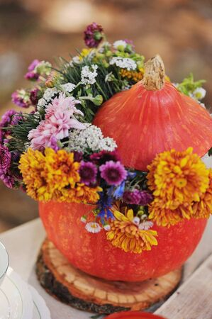 autumn still life with pumpkin and lilac flowers