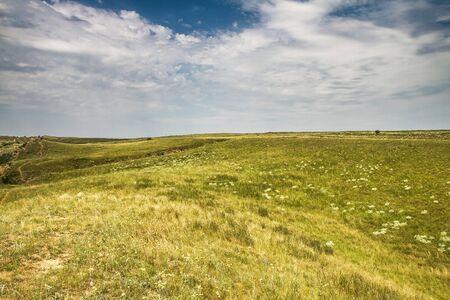 steppe: Steppe