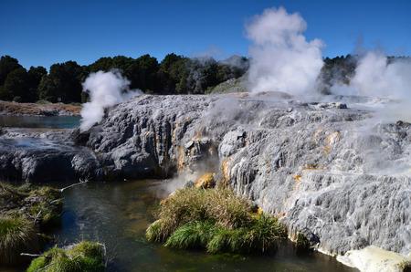 Whakarewarewa - abbreviation, completely same it sounds like Te Whakarewarewatanga O Te Ope Taua A Wahiao, and means rebellion Vahiao warriors. New Zelandiya.Vsego are more than 500 mud pools and 60 geyzerov.Samy large geyser - Pohutu, he can shoot the