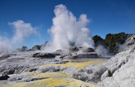Whakarewarewa - short name, it sounds completely the same as Te Whakarewarewatanga O Te Ope Taua A Wahiao, and means rebellion Vahiao warriors. New Zelandiya.Vsego are more than 500 mud pools and 60 geyzerov.Samy large geyser - Pohutu, he can shoot the  Stock Photo