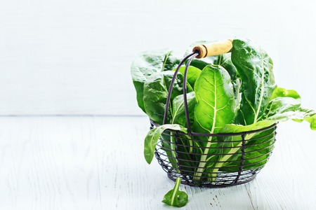 Fresh chard leaves on a white background, free text space.