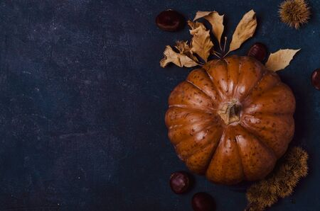 Fall pumpkin with leaves and chestnuts 写真素材