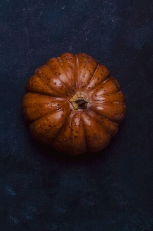 Fall pumpkin on blue table