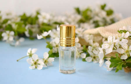 Springtime aromatherapy concept with essential oil or perfume bottle over blossom on blue background. Spa luxury cosmetic and beauty blogging. Valentines day, Mothers day or wedding greeting card.