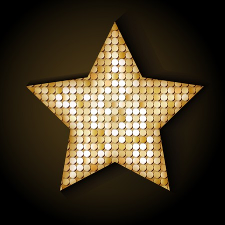 Shiny sequins star. Eps 10 vector illustration Vector