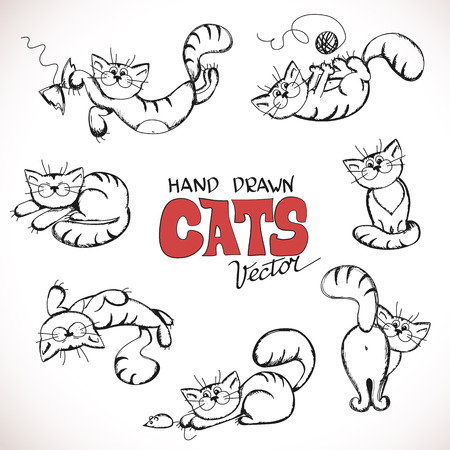 gray cat: Sketch illustration of playful cats.  Illustration