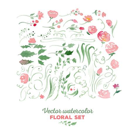 floral arrangements: Set of floral elements  Illustration