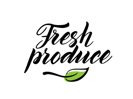 produce: Hand drawn fresh produce brush lettering with leaf. Illustration