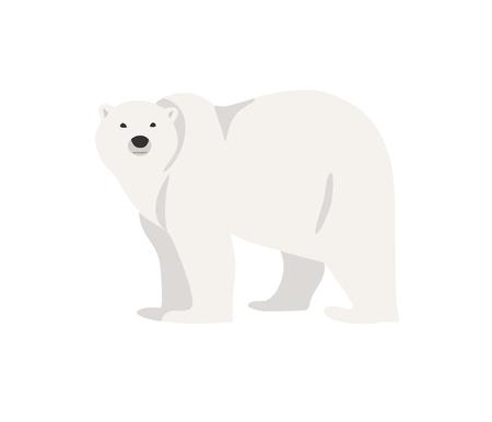 endangered: Hand drawn illustration of polar bear isolated on white. Walking or standing polar bear, side view. Flat style Illustration