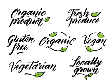 Hand drawn healthy food brush letterings. Organic, organic product, gluten free, vegan, locally grown, vegetarian, fresh produce. Label, logo template isolated on white background.