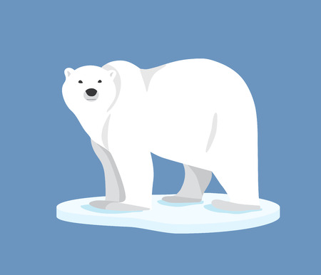 floe: Hand drawn illustration of polar bear. Polar bear standing on ice floe, side view. Flat style