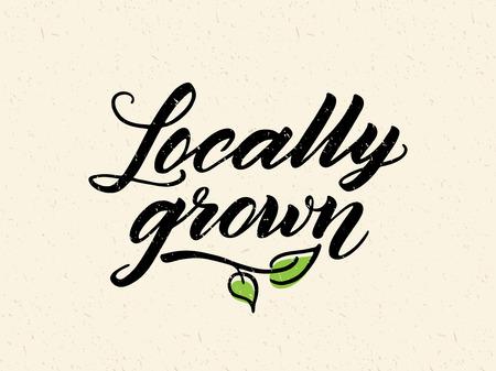 地元産の手描きブラシに対してレタリングはリサイクル用紙の背景です。ロゴ、バッジ テンプレート健康食品の市場、格納します。テクスチャの要素を簡単に削除できます。 写真素材 - 57335897