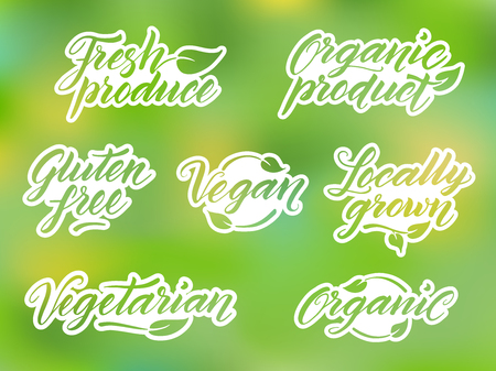 food healthy: Hand drawn healthy food letterings.  Label, logo, badge template against blurred background.