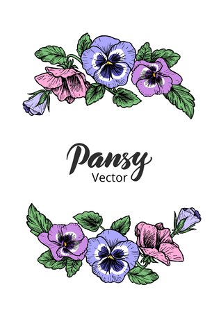 Frame with hand drawn pansy flowers, vector illustration. Vintage style. Illusztráció