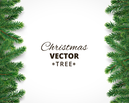 pinetree: Background with vector christmas tree branches and space for text. Realistic fir-tree border, frame isolated on white. Great for christmas cards, banners, flyers, party posters.