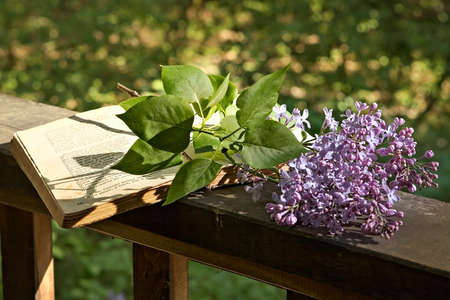 Romantic evening in the country house-sunset,  book of poetry and  lilac branch Archivio Fotografico