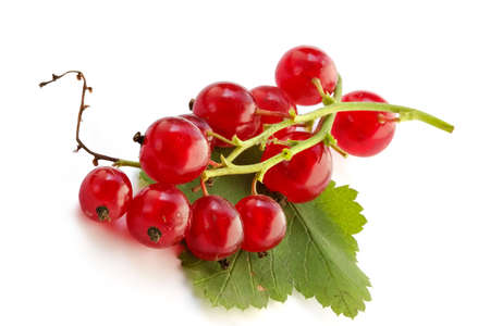 picked: Red currant on the table in a shadow of suburban site  Stock Photo
