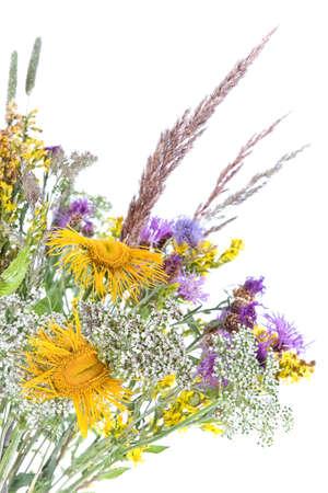 unpretentious: Bouquet of field flowers and plants-unpretentious beauty of a rural life
