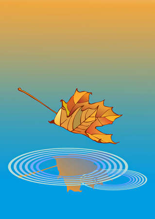 Indian summer-illustration of maple leaf during a fall