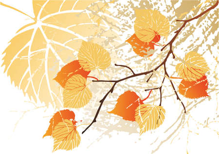 Autumn september grunge leaves background-vector sketch of variants with attritions and different color photo
