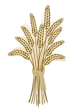 Wheat harvest-detailed illustration of ripe ears for designs Stock Illustration - 1923089