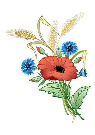 wild flowers bunch-wheat, poppy,cornflower. Detailed vector illustration of country style illustration