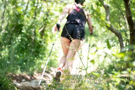 View from behind of a woman. Hiking, adventure and exercise. Nordic walking legs and poles in summer nature. Active people outdoor.